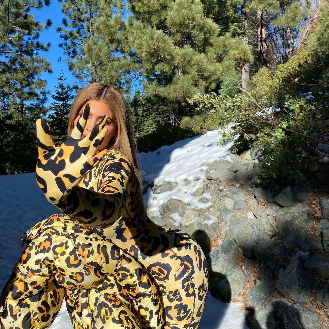 Кайли Дженнер в тотальном леопардовом образе взорвала сетку упругими ягодицами и пышными сиськами